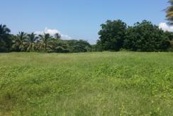 Terreno en venta Juan Gaviota